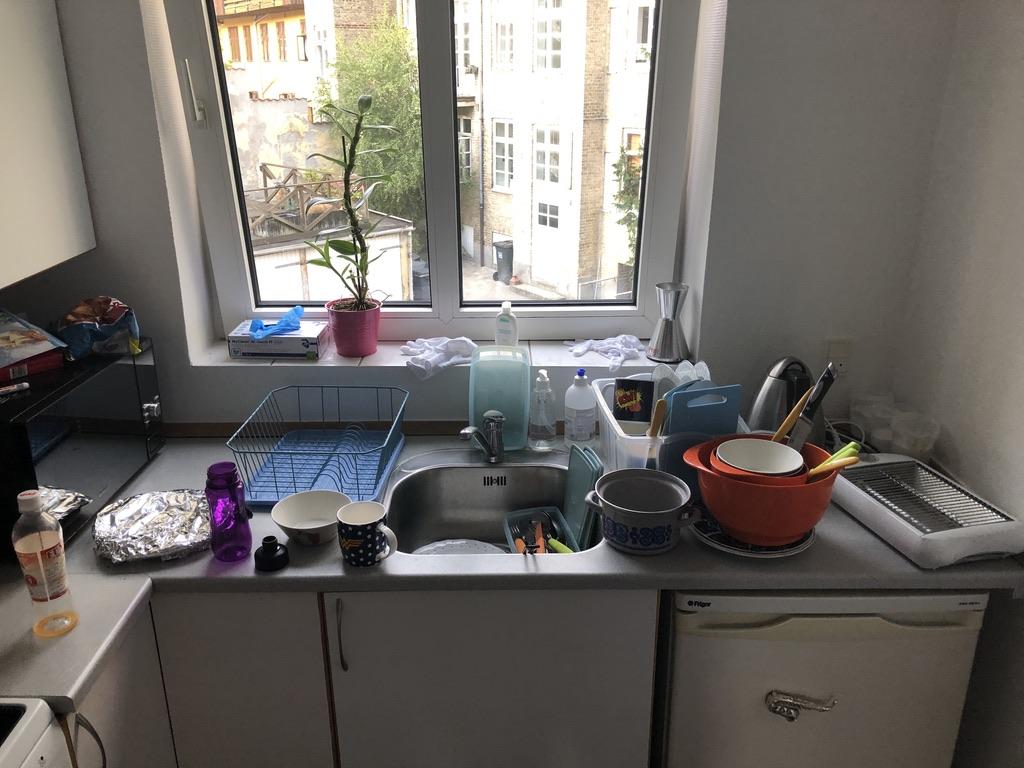 Bagningens bagside eller sagaen om opvaskehelvedet